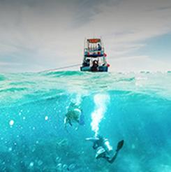 Buceo en el mar deCozumel, México