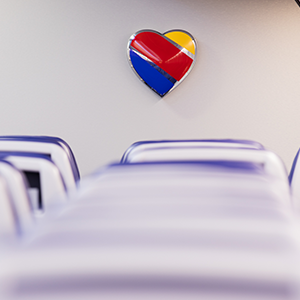 Image of the Southwest Heart logo in a plane interior